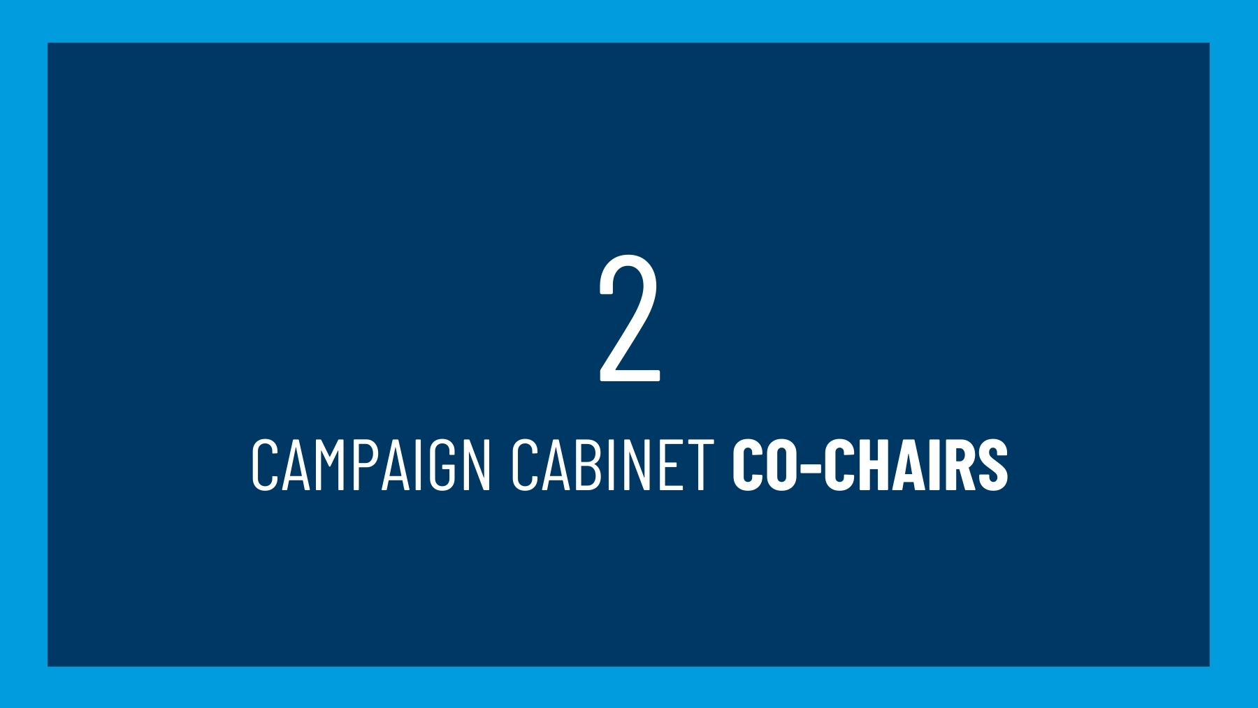 2 campaign cabinet co-chairs